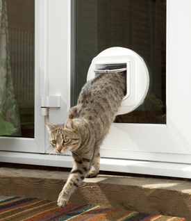 Glass pet door installation